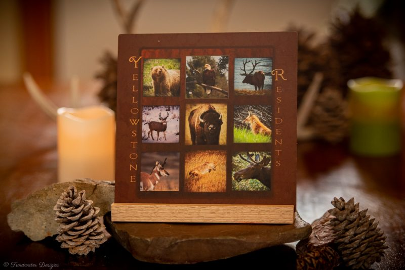 Mini Metals, Wildlife & Nature Photography on Aluminium with Stand